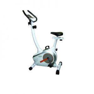 دوچرخه ثابت تایتان فیتنس Titan Fitness 51000