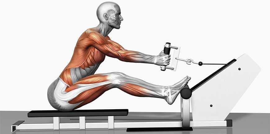 یک ورزش کامل برای چربی سوزی و عضله سازی با دستگاه روئینگ