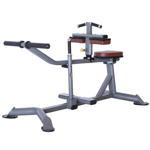 دستگاه ساق پا وزنه آزاد اینپارس INPARS PV4012
