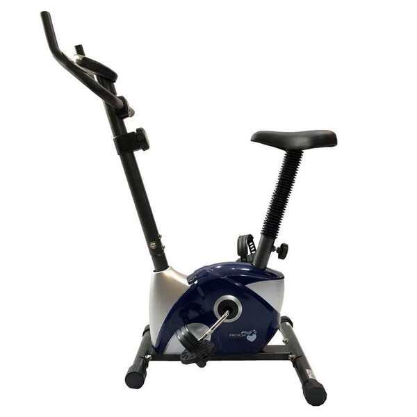 دوچرخه ثابت پاندا Panda B533
