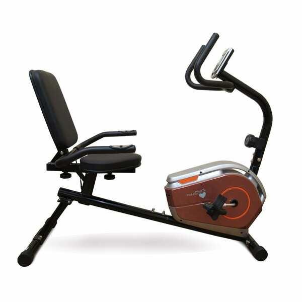 دوچرخه ثابت پشتی دار پاندا Panda L360