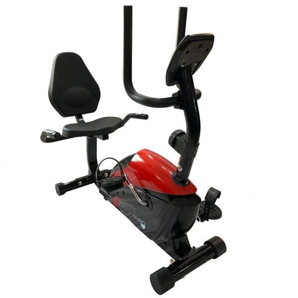 دوچرخه ثابت پشتی دار پاندا Panda R352 (2)