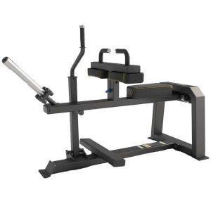 دستگاه ساق پا نشسته وزنه آزاد دی اچ زد DHZ E1062