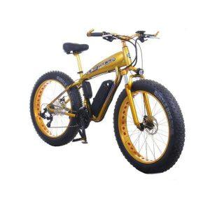 دوچرخه برقی فایتر Fighter