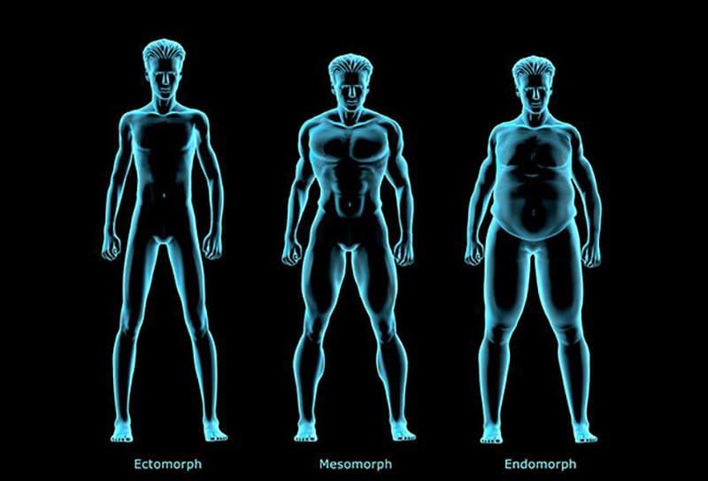 آیا نوع بدن خود را میشناسید؟ انواع فرم بدن و گروه های بدنی (3)